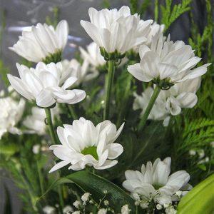Detalle de flores blancas y margaritas en ramo funerario de tienda online de Valladolid